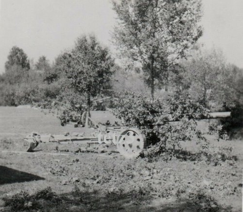 Polen 1939 v.Krakau Geschütz Kanone Tarn Camo Pak.jpg