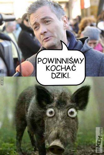 01_to_wielkie_zagrozenie_dla_dzikow.jpg