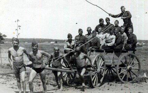 niemiecki konny woz blitzkrieg.jpg