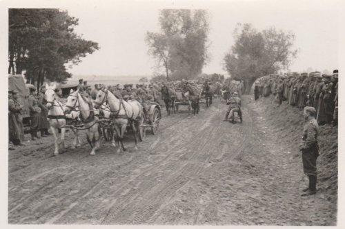 Polenfeldzug, Vorbeimarsch polnischer Gefangene, Wehrmacht_1.jpg