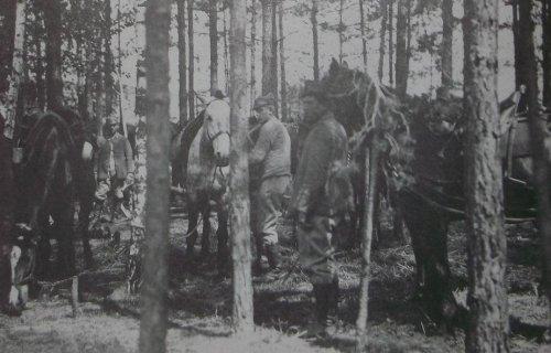 1920 14pap.JPG