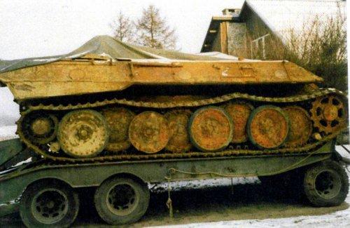 z9240260V,Pantera-transportowana-po-wydobyciu-z-Czarnej-Nidy.jpg