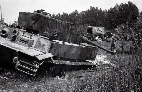 Tiger I z Schwere Panzer-Abteilung 504.jpg
