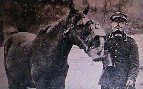 pgaz kon.JPG