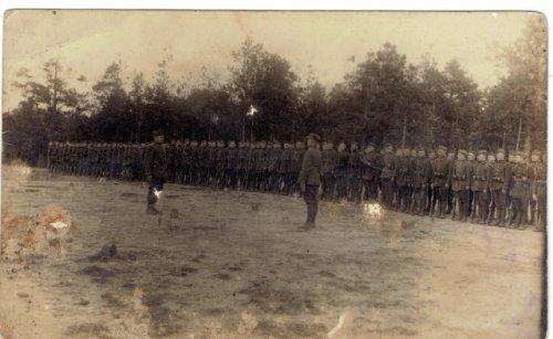 Gołąb Ferdynand ze swoimi żołnierzami - melduje - Zambrów.jpg