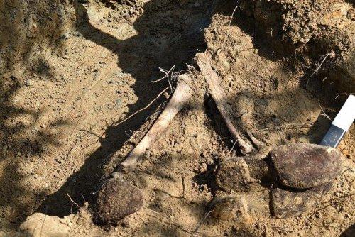 z24966736V,Szczatki-zolnierzy-znalezione-podczas-budowy-obwod.jpg