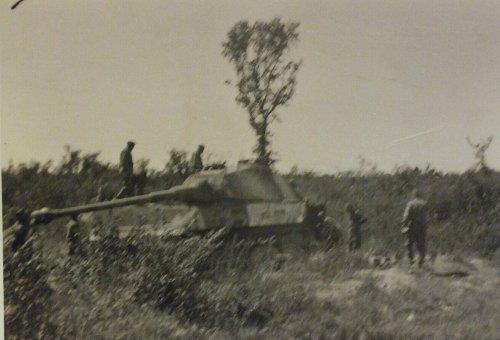 captured German King Tiger from sPzAbt 503.jpg