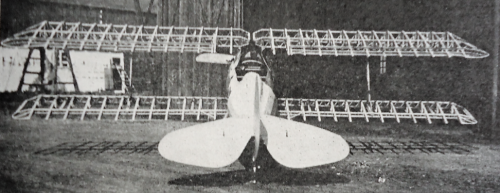 Samolot SKRABA.png
