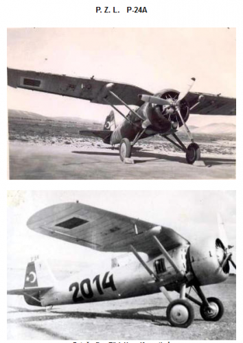 Turecki PZL 24 A.png
