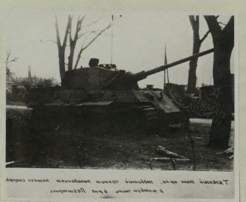 TigerII_503_Danzig1945_01.thumb.jpg.0bfcbf79c5f7d4332db0ec88ddbff7e4.jpg