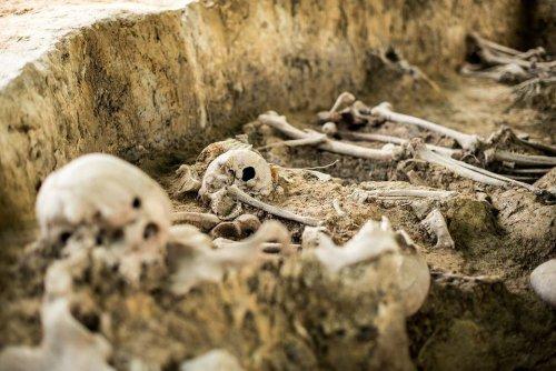 z26238614V,Badania-archeologiczne-na-miejscu-pochowku-zolnier.jpg