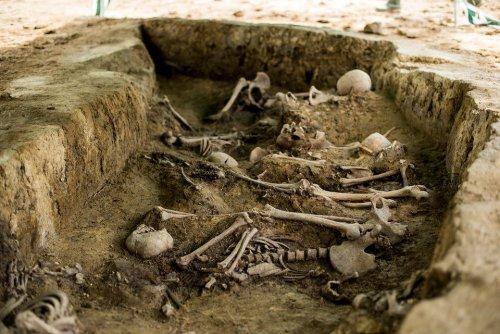 z26238617V,Badania-archeologiczne-na-miejscu-pochowku-zolnier.jpg