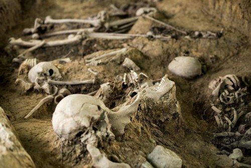 z26238612V,Badania-archeologiczne-na-miejscu-pochowku-zolnier.jpg