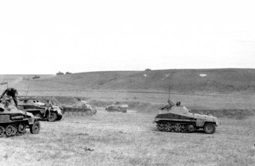 1803745855_Bundesarchiv_Bild_101I-218-0511-28A_Russland-Sd_Schtzenpanzer_Panzer_II.thumb.jpg.a0f275fdc712f965cdfe68125a308d6d.jpg