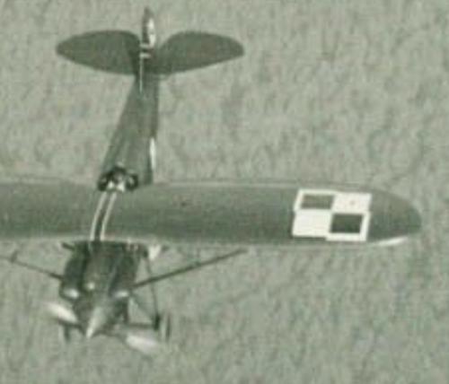 PWS-10 dca 141.EM 4.PL - Toruń 1931-33.png
