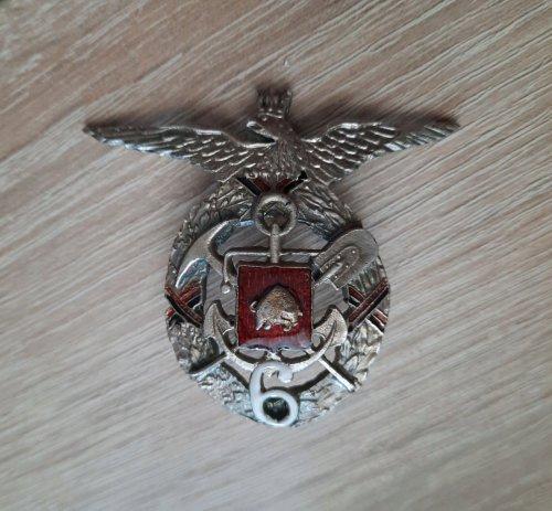 sap odznak 6 bat brzesc.jpg