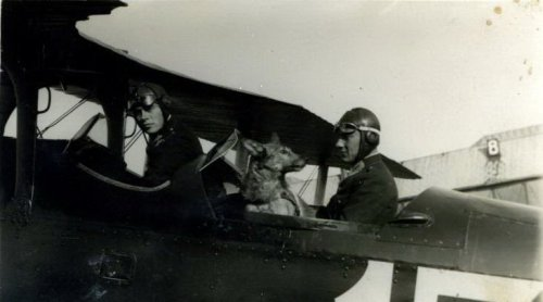 Grudziadz-1931-r.-Potez-XV.jpg