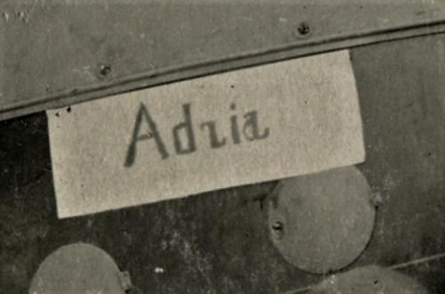 Alb. Adzia.png