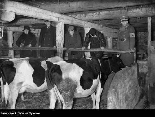 4. Niemcy na wsi w codziennych relacjach z ludźmi II (nac).jpg