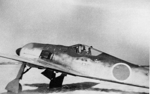 Focke-Wulf Fw 190A-5.jpg
